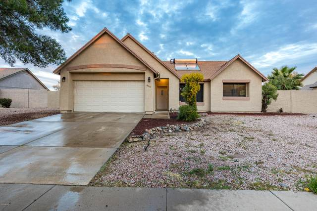 19015 N 7 Drive, Phoenix, AZ 85083 (MLS #6041059) :: CC & Co. Real Estate Team