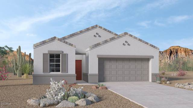 30754 W Picadilly Road, Buckeye, AZ 85396 (MLS #6041060) :: The Daniel Montez Real Estate Group