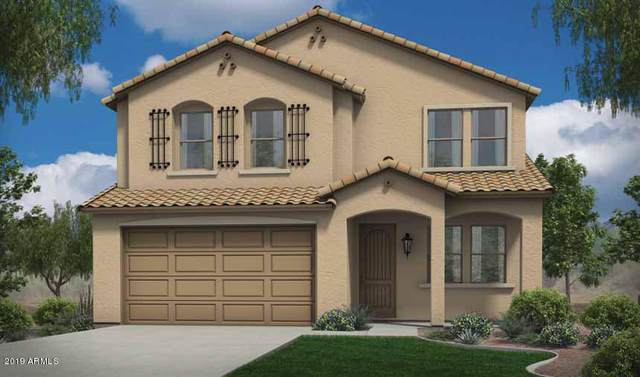 17227 W Molly Lane, Surprise, AZ 85387 (MLS #6041062) :: The Garcia Group