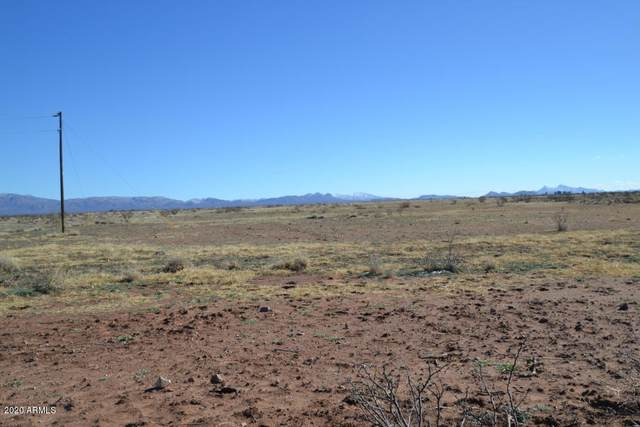 Tbd 160 Acres, McNeal, AZ 85617 (MLS #6041075) :: NextView Home Professionals, Brokered by eXp Realty