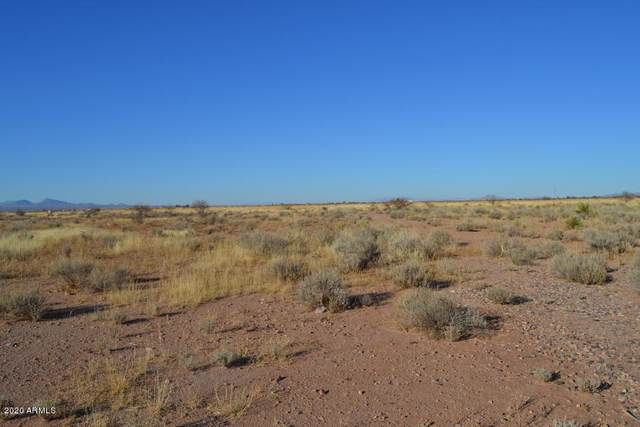 TBD 20 Acres Lee Road, McNeal, AZ 85617 (MLS #6041077) :: Brett Tanner Home Selling Team