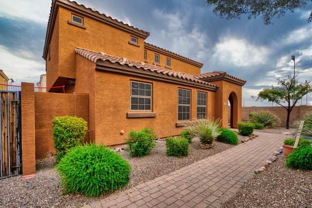 3027 E Harrison Street, Gilbert, AZ 85295 (MLS #6041081) :: The Laughton Team