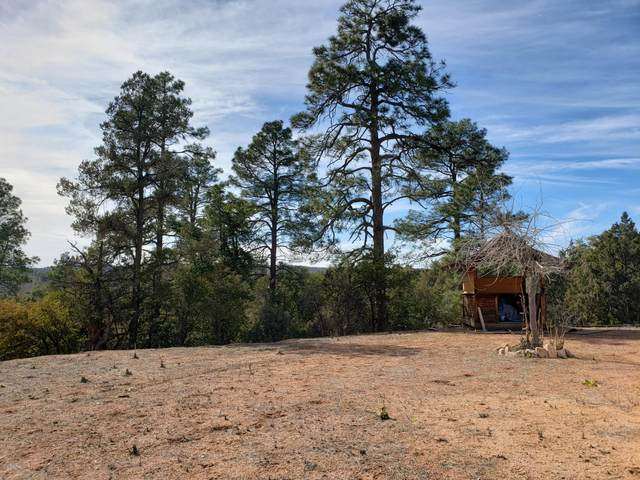 65 S Nola Circle, Payson, AZ 85541 (MLS #6041084) :: NextView Home Professionals, Brokered by eXp Realty