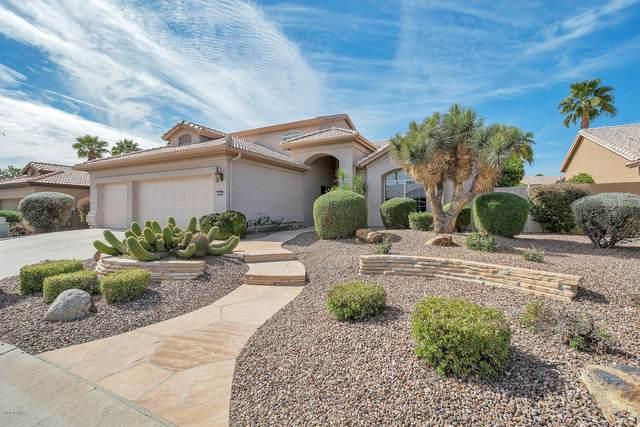 3808 N 154TH Drive, Goodyear, AZ 85395 (MLS #6041086) :: RE/MAX Desert Showcase