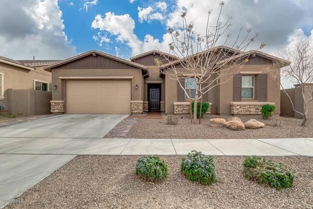 1413 E Pedro Road, Phoenix, AZ 85042 (MLS #6041138) :: RE/MAX Desert Showcase
