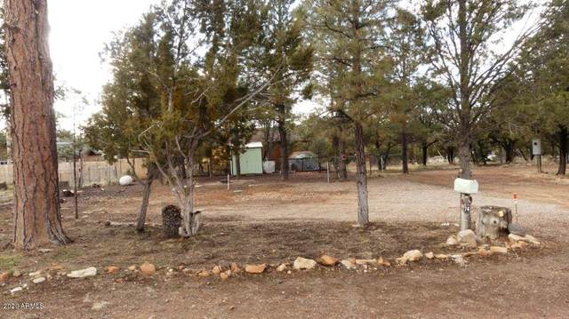 3386 Buckskin Road, Overgaard, AZ 85933 (MLS #6041186) :: Openshaw Real Estate Group in partnership with The Jesse Herfel Real Estate Group