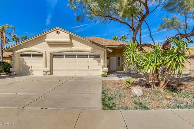 4432 W Creedance Boulevard, Glendale, AZ 85310 (MLS #6041252) :: Dijkstra & Co.