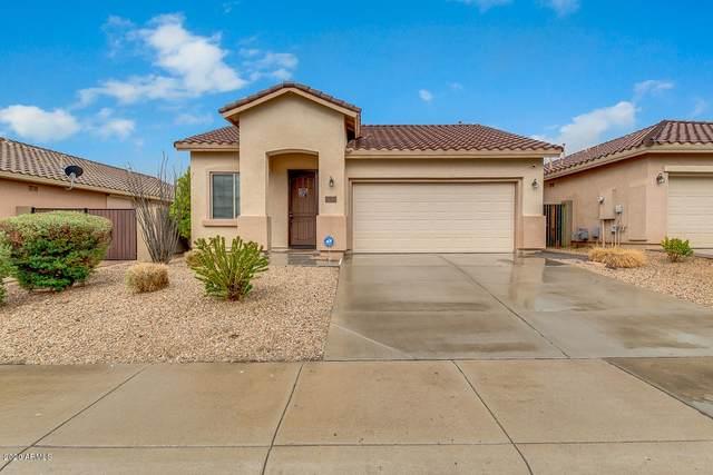 37812 N Pagoda Lane, Phoenix, AZ 85086 (MLS #6041257) :: Dijkstra & Co.