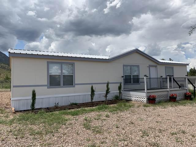 3310 E Serritos Ranch Road, Hereford, AZ 85615 (MLS #6041260) :: Conway Real Estate