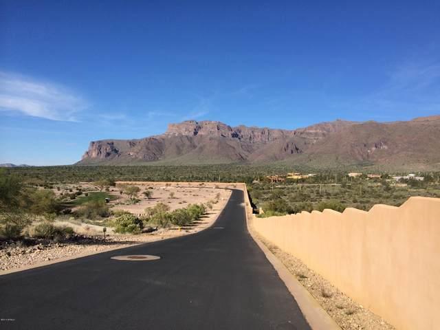 2791 S Petroglyph Trail, Gold Canyon, AZ 85118 (MLS #6041267) :: The Kenny Klaus Team