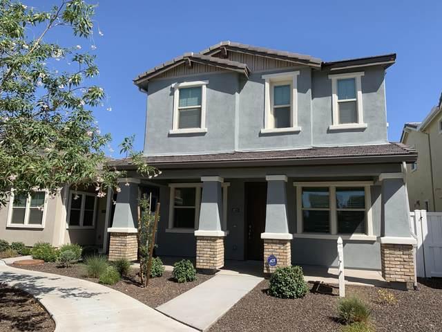 3873 E Robert Street, Gilbert, AZ 85295 (MLS #6041270) :: Dijkstra & Co.