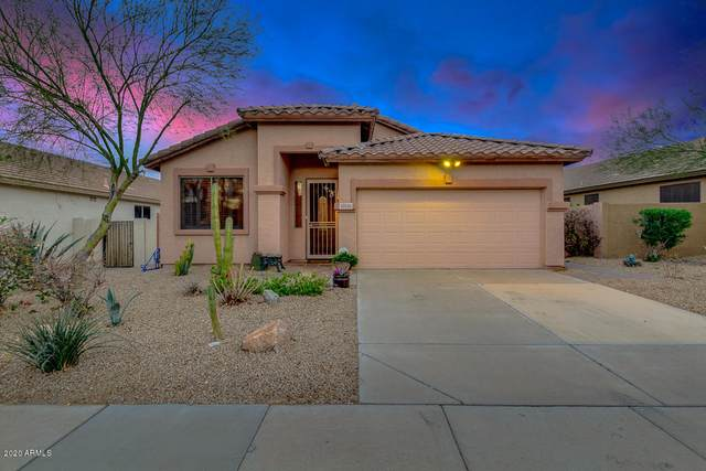 10219 S 181ST Avenue, Goodyear, AZ 85338 (MLS #6041324) :: Cindy & Co at My Home Group