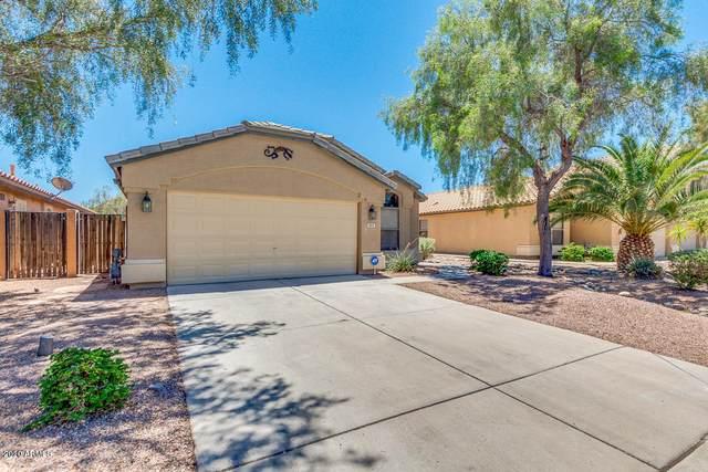 953 E Lovegrass Drive, San Tan Valley, AZ 85143 (MLS #6041380) :: The Kenny Klaus Team