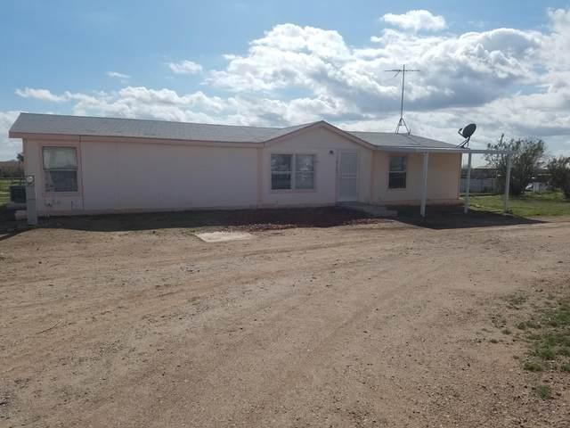 28618 N 213TH Avenue, Wittmann, AZ 85361 (MLS #6041394) :: Yost Realty Group at RE/MAX Casa Grande