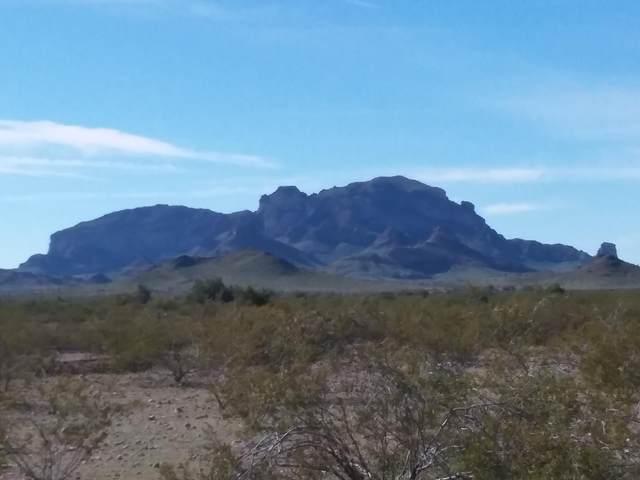 0 W Willetta Street, Tonopah, AZ 85354 (MLS #6041433) :: The W Group
