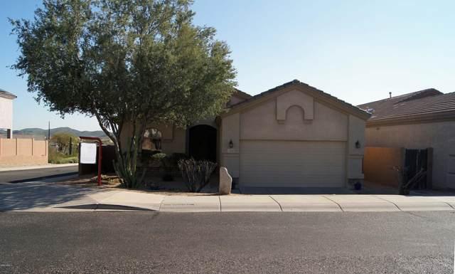 6541 W Molly Lane, Phoenix, AZ 85083 (MLS #6041442) :: Dijkstra & Co.