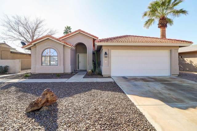 10233 E Spring Creek Road, Sun Lakes, AZ 85248 (MLS #6041453) :: Brett Tanner Home Selling Team