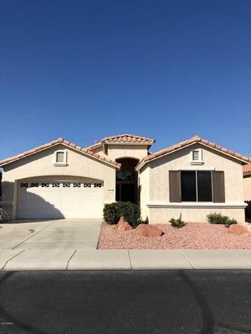 17670 W Hayden Drive, Surprise, AZ 85374 (MLS #6041461) :: Brett Tanner Home Selling Team