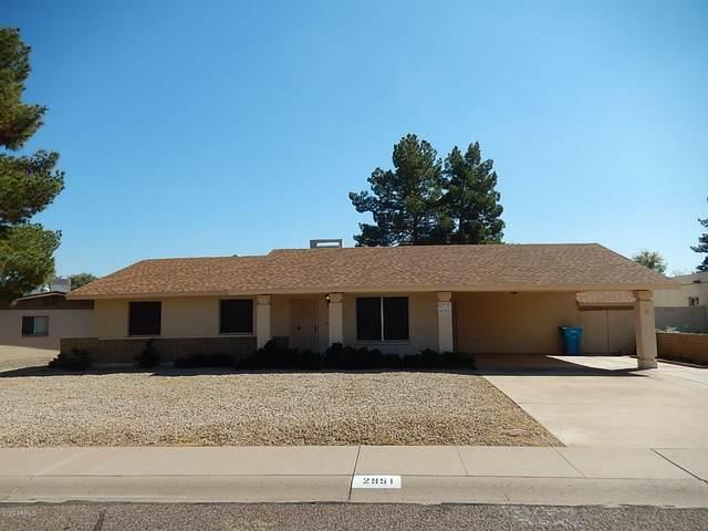 2951 E Bloomfield Road, Phoenix, AZ 85032 (MLS #6041491) :: The Helping Hands Team