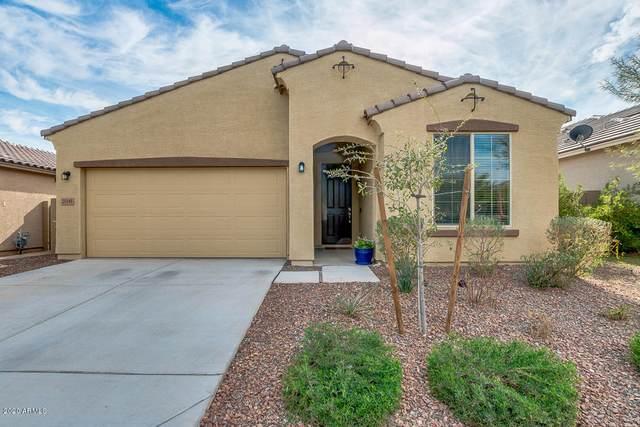 21145 W Granada Road, Buckeye, AZ 85396 (MLS #6041523) :: The Property Partners at eXp Realty