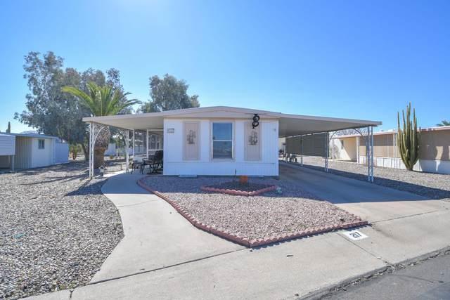2100 N Trekell Road #217, Casa Grande, AZ 85122 (MLS #6041546) :: Brett Tanner Home Selling Team