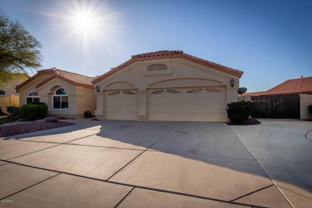 2131 N 124TH Drive, Avondale, AZ 85392 (MLS #6041559) :: Homehelper Consultants
