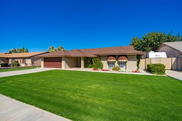 7308 W Windrose Drive, Peoria, AZ 85381 (MLS #6041580) :: Yost Realty Group at RE/MAX Casa Grande