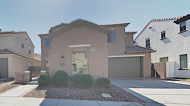 283 W Rosemary Drive, Chandler, AZ 85248 (MLS #6041587) :: CC & Co. Real Estate Team