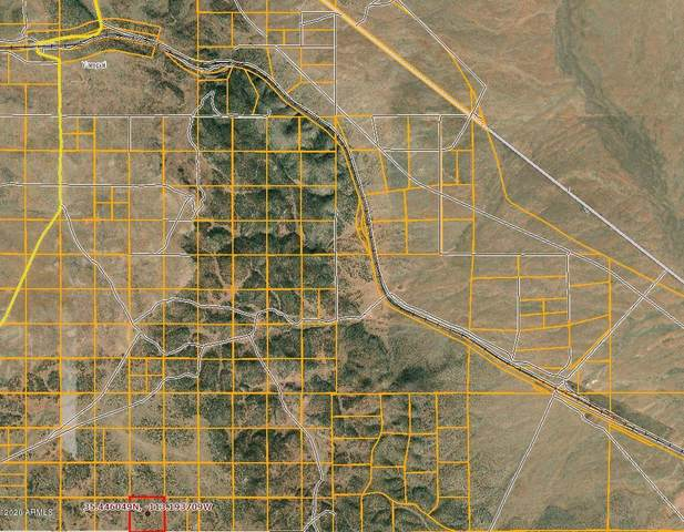 Lot 150 Antelope Run Road, Peach Springs, AZ 86434 (MLS #6041588) :: The Ramsey Team