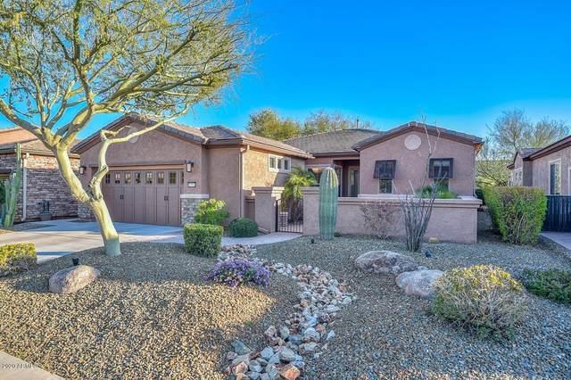 13061 W Running Deer Trail, Peoria, AZ 85383 (MLS #6041608) :: Yost Realty Group at RE/MAX Casa Grande