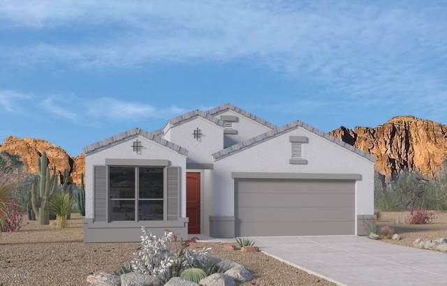 2048 E Alameda Road, Phoenix, AZ 85024 (MLS #6041613) :: Brett Tanner Home Selling Team