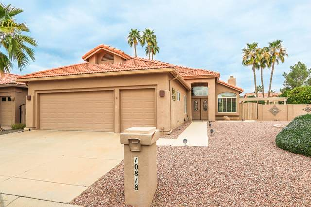 10818 E Regal Drive, Sun Lakes, AZ 85248 (MLS #6041614) :: CC & Co. Real Estate Team