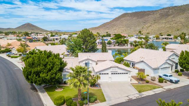 21606 N 55th Drive, Glendale, AZ 85308 (MLS #6041621) :: Midland Real Estate Alliance