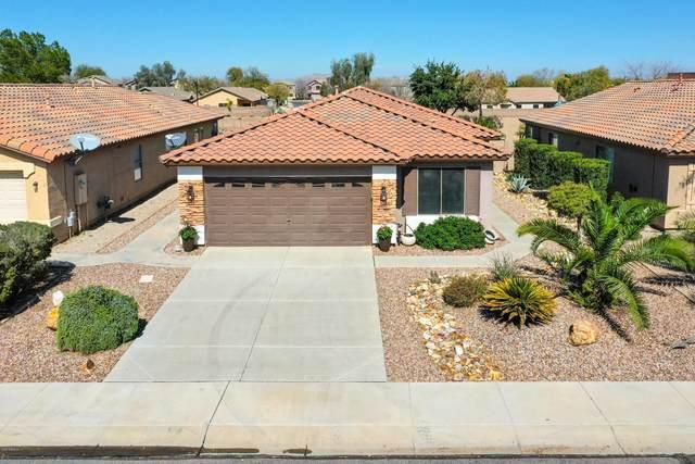 42346 W Venture Road, Maricopa, AZ 85138 (MLS #6041664) :: Yost Realty Group at RE/MAX Casa Grande