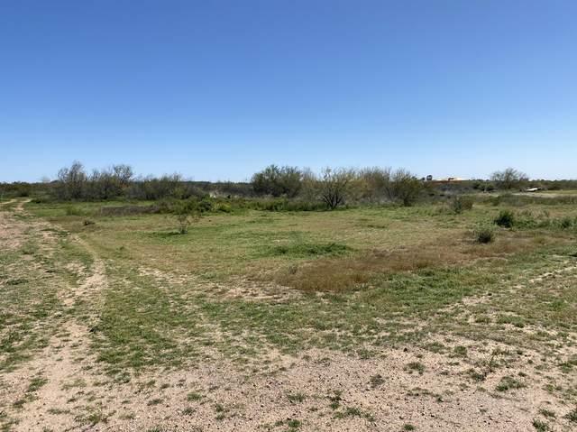 294XX N 214th Lane, Wittmann, AZ 85361 (MLS #6041702) :: The Property Partners at eXp Realty