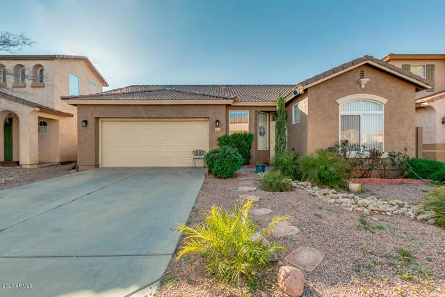 40584 N Domiano Street, San Tan Valley, AZ 85140 (MLS #6041707) :: CANAM Realty Group