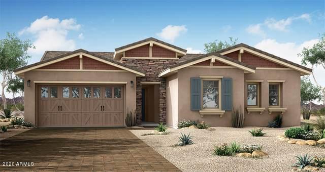 9903 E Rubidium Avenue, Mesa, AZ 85212 (MLS #6041721) :: The Property Partners at eXp Realty