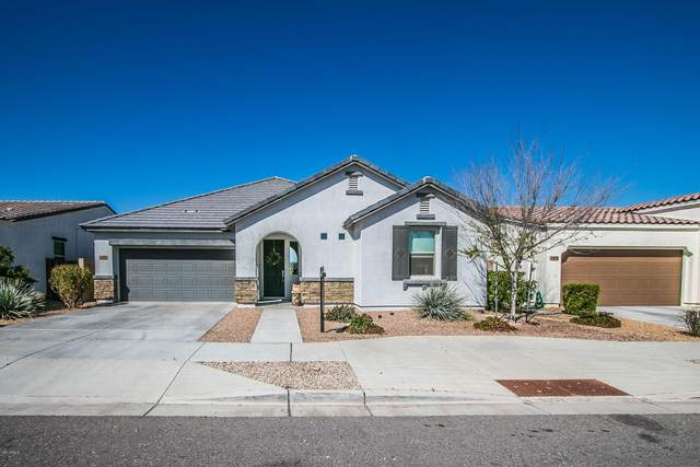 22908 S 226TH Street, Queen Creek, AZ 85142 (MLS #6041746) :: CANAM Realty Group