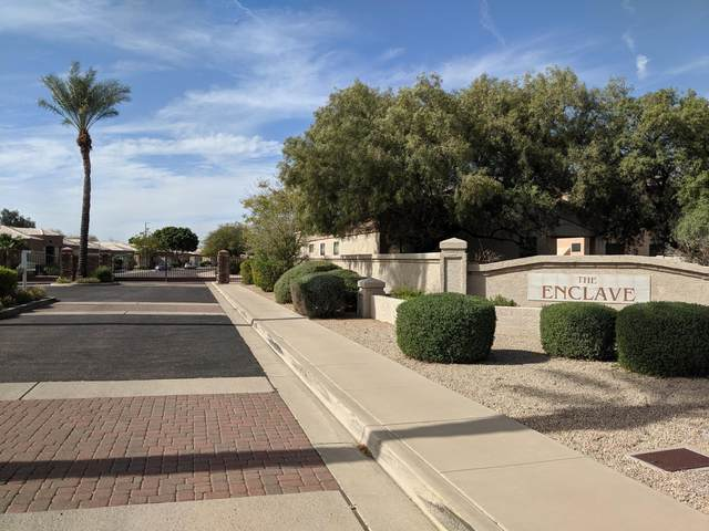 6362 W Blackhawk Drive, Glendale, AZ 85308 (MLS #6041809) :: Yost Realty Group at RE/MAX Casa Grande