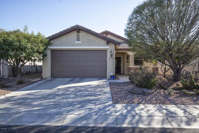 27219 W Ross Avenue, Buckeye, AZ 85396 (MLS #6041850) :: Yost Realty Group at RE/MAX Casa Grande