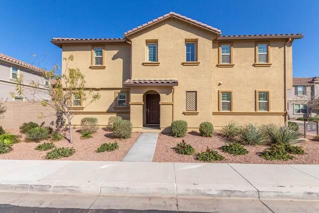 6912 E Peralta Circle, Mesa, AZ 85212 (MLS #6041885) :: Santizo Realty Group