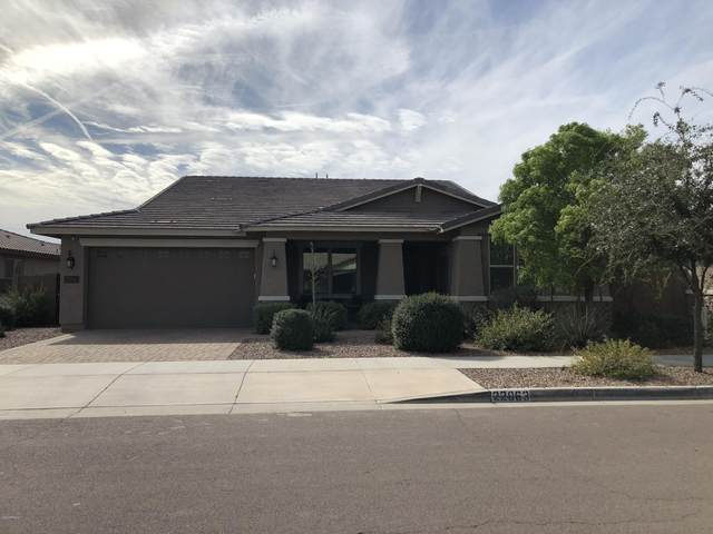 22063 E Domingo Road, Queen Creek, AZ 85142 (MLS #6041926) :: My Home Group