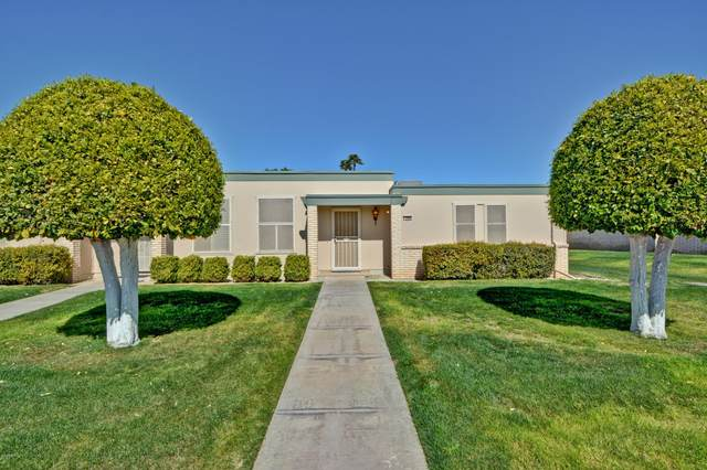 9902 W Hawthorn Drive, Sun City, AZ 85351 (MLS #6041950) :: The W Group