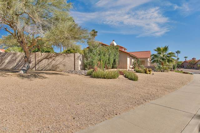 9105 N 105TH Place, Scottsdale, AZ 85258 (MLS #6041971) :: Yost Realty Group at RE/MAX Casa Grande