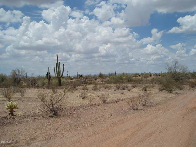 32499 W Carefree Highway, Unincorporated County, AZ 85361 (MLS #6041982) :: Homehelper Consultants