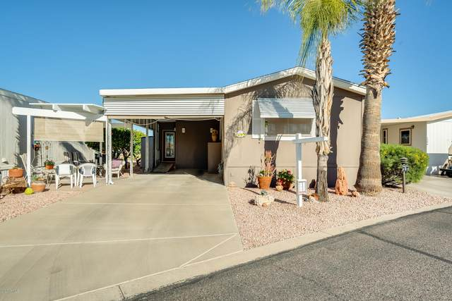 17200 W Bell Road #1587, Surprise, AZ 85374 (MLS #6041993) :: Brett Tanner Home Selling Team