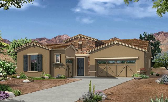 12685 E Nandina Place, Gold Canyon, AZ 85118 (MLS #6041997) :: The W Group
