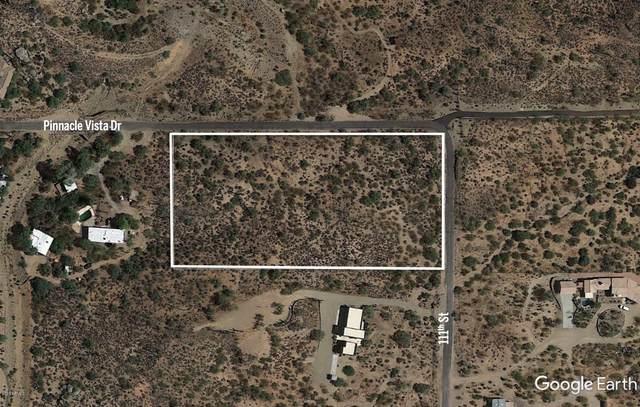 27390 N 111TH Street, Scottsdale, AZ 85262 (MLS #6042005) :: The W Group