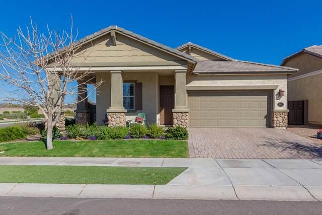 10412 E Nido Avenue, Mesa, AZ 85209 (MLS #6042015) :: The Kenny Klaus Team