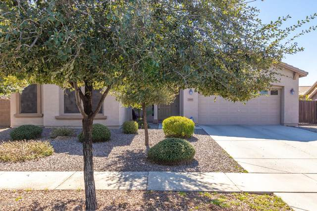 2943 E Ironside Lane, Gilbert, AZ 85298 (MLS #6042019) :: Santizo Realty Group